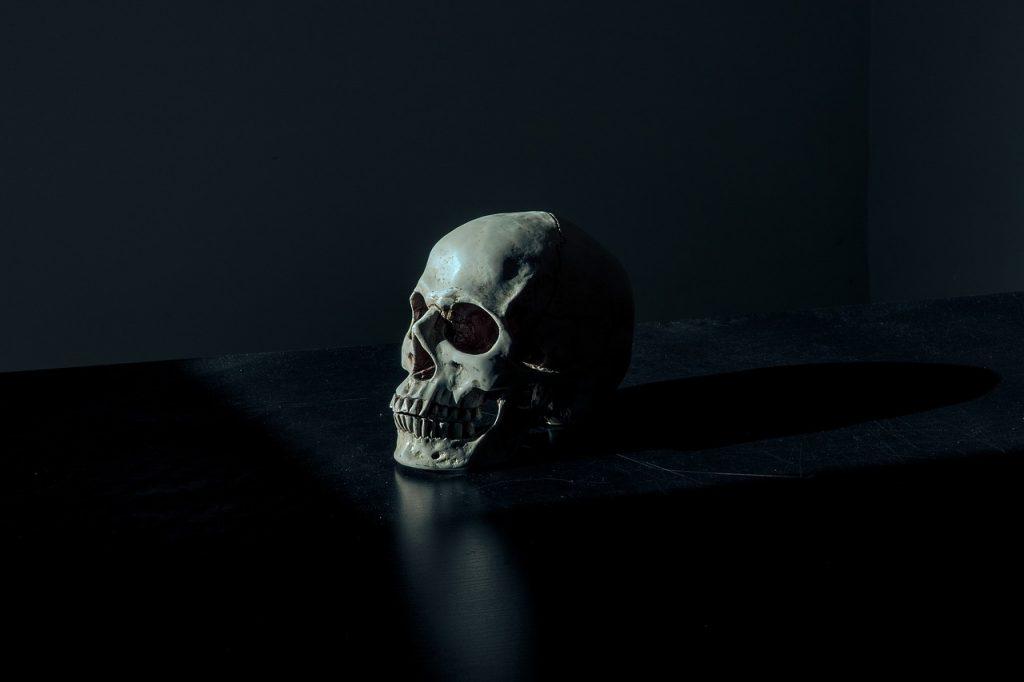 skull-on-table