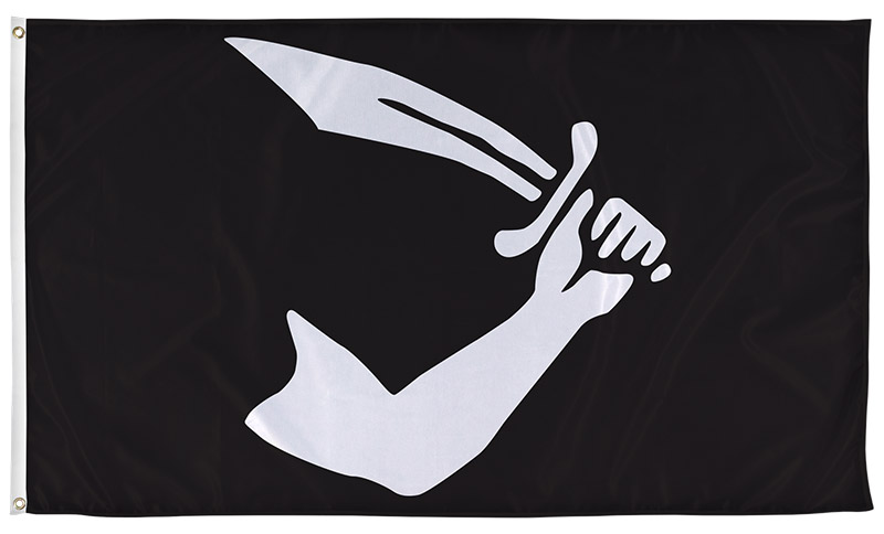 thomas-tew-pirate-flag