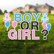 Gender Reveal Yard Letters