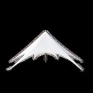 White Star Tent 43ft